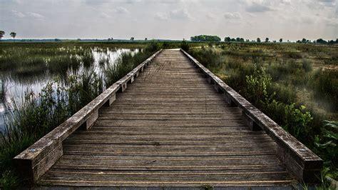 bridge wood landscape  photo  pixabay