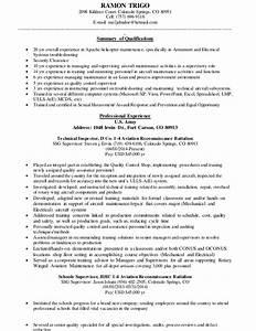 trigo resume aviation general resume With aviation resume
