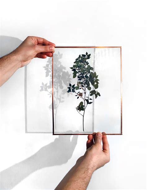 diy herbier sous verre et cadre en cuivre la pigiste blogue