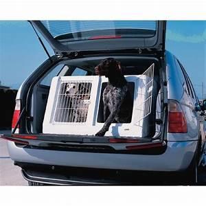 Voiture Pour Chien : cage de transport autobox plastique double morin caisses et accessoires pour le transport ~ Medecine-chirurgie-esthetiques.com Avis de Voitures