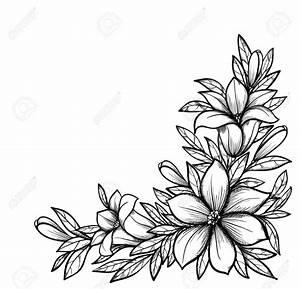 Beautiful Drawings Of Flowers - Drawing Of Sketch