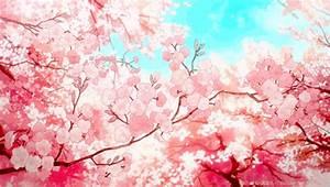 anime cherry blossoms   Tumblr