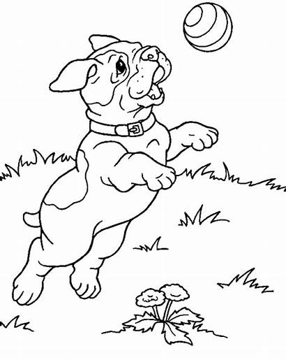 Coloring Puppy Pages Jumping