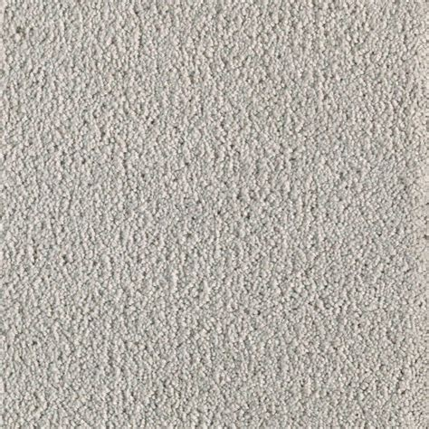 Hypoallergenic Carpet Home Depot by Trafficmaster Moon Mist Color Lunar Texture 12 Ft