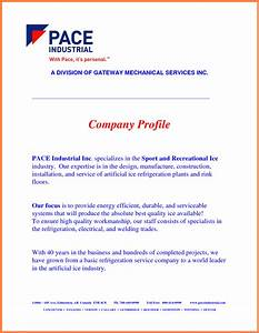 5 sample company profile for small business company With how to make a company profile template