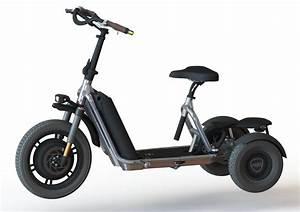 Elektro Trike Scooter : freeliner elektrofahrzeug evo ii trankvile electric vehicles ~ Jslefanu.com Haus und Dekorationen
