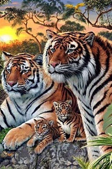 hidden tigers spot woman own magazine
