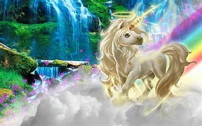 Unicorn Magical Horse Animal Wallpapers Background Unicorns