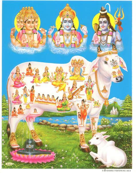 gods  res images srihitha ads