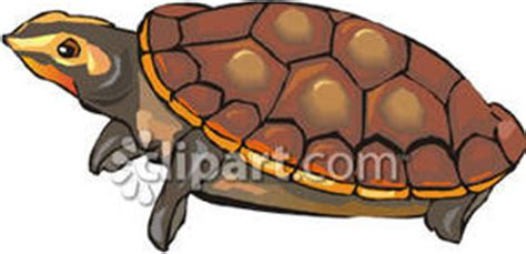 Snapping Turtle - Royalty Free Clipart Picture
