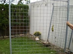 Terrasse Zaun Metall : rankgitter rankengitter pflanzengitter zaun sichtschutz aus metall verzinkt in alfdorf ~ Sanjose-hotels-ca.com Haus und Dekorationen