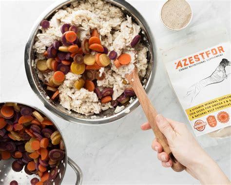 healthy homemade dog food recipes homemade dog food
