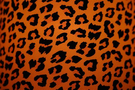 Animal Pattern Wallpaper - animal print desktop backgrounds wallpaper cave
