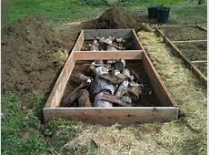Cinderblock versus wood for raised beds? gardening