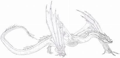 Smaug Drawing Dragon Drawings Deviantart Pencil Dragons