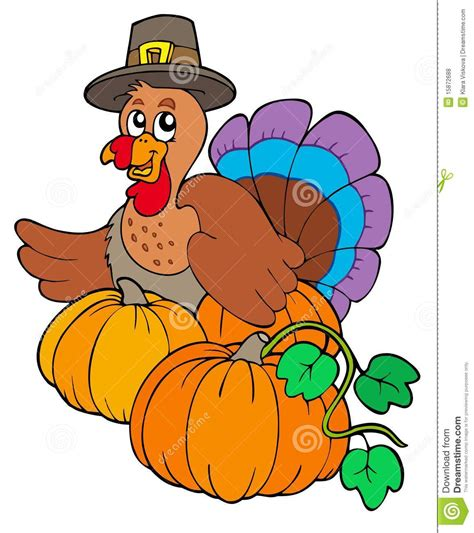 thanksgiving turkey with pumpkins royalty free stock photos image 15872688