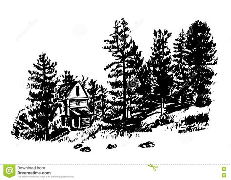 draw house plans drawing a house among the pines and firs illustration