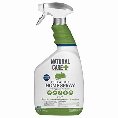 Flea Spray Tick Natural Care Walmart Treatment