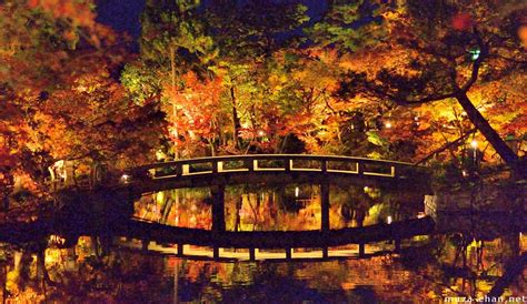 Autumn Wallpaper Hd 1920x1080 Surreal Autumn Night At Eikando Kyoto