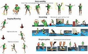 Examples Of Exercises With Preventive Content In Warm