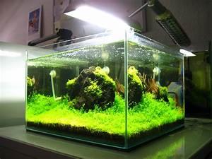 Aquarium Led Beleuchtung : produktvorstellung aquael led light ~ Frokenaadalensverden.com Haus und Dekorationen