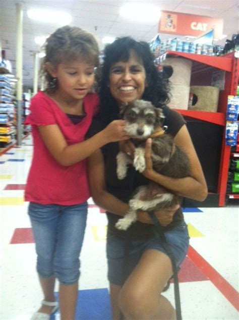 zoes friends animal rescue hooray im adopted
