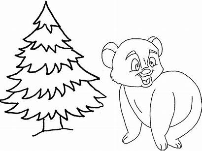 Sapin Prepositions Ours Dessin Coloring Flashcards Coloriage