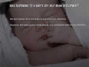 Baby Brain Development By Shelby Mauchline