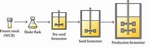 Flow Diagram For The Classical Fermentation Process  The