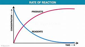 Bestseller  Holt Chemistry Study Guide Reaction Rate Answers