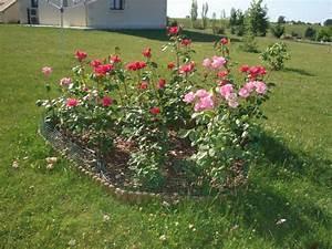 emejing massif dans mon jardin images design trends 2017 With idee de massif de jardin 3 mon jardin en automne suite