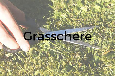 Der Garten Guru by Garten Guru De Deutschsprachige Portalseite Rund Um Den