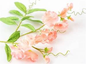 Zauberhafte Wicken aus Blütenpaste Video Tutorial