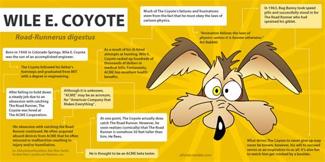 wile  coyote  history confusions  connections