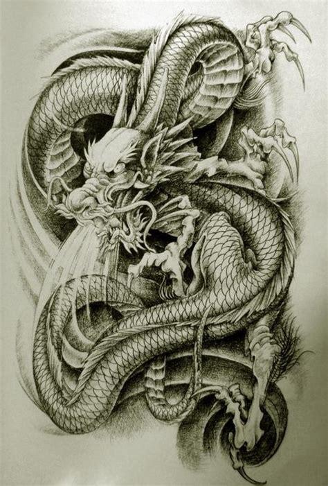 dragon tattoo gallery oriental dragon tattoo designs