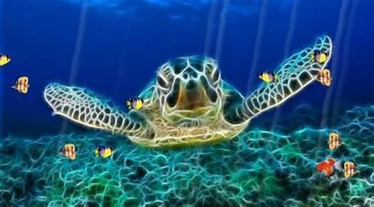 Ocean Screensaver Screensavers Sound Desktop Animated Effects
