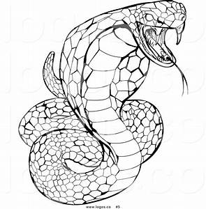 how to draw a cobra coloring pages