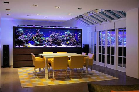$1 Home Decor :  Customized Fish Tanks As Home