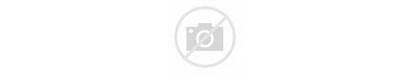 Dailymotion Svg Wikipedia