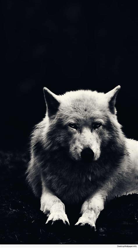 Black Wolves Wallpaper Desktop