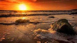 Beach, Coast, With, Waves, Foam, And, Rock, Under, Sunset, Golden