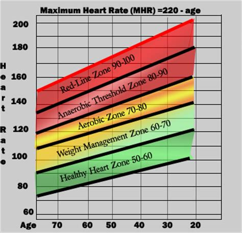 rate range by age physical activity physiological changes
