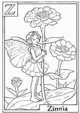 Coloring Flower Zinnia Fairy Letter sketch template