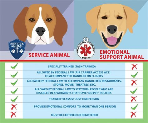 Emotional Support Animal Guide {your 2018 Must Read Handbook}