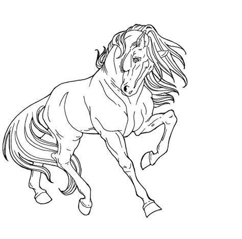 drawings  animals digital art drawings