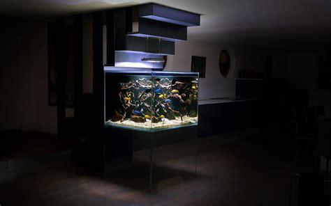 Arredamenti Per Acquari Un Acquario Di Design Per Arredare Casa Animali Pucciosi