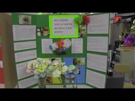 science fair poster boards youtube