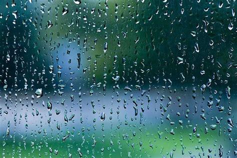 Ahhhh, It's Raining  Yukon News