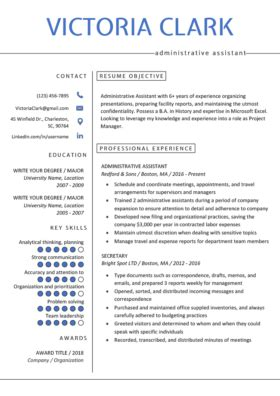 Professional Resume Format by Professional Resume Templates Free Resume Genius