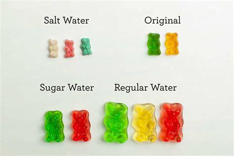 gummy bear  pop culture  dictionarycom